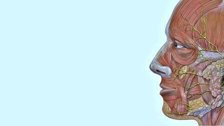 Неврит на лицевия нерв
